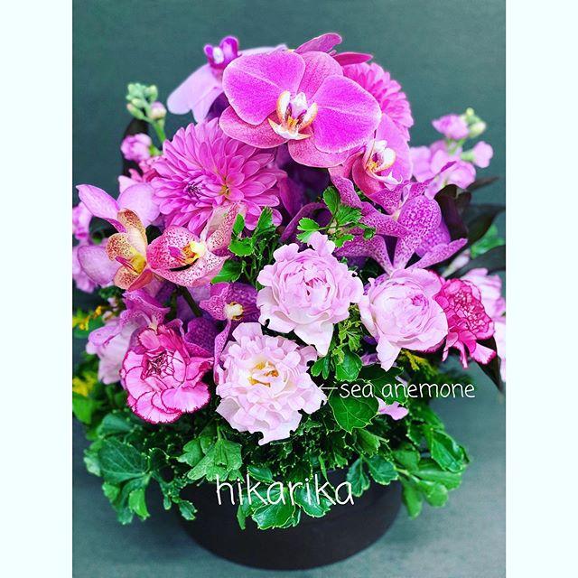 最近、仕入れ担当お気に入りのピンクバラ、「シーアネモネ」。訳すとイソギンチャク。確かに花びらの縁の形が似ています。