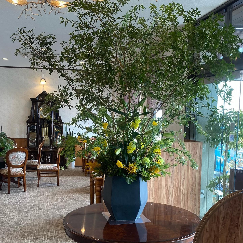 池田町のカフェ古時計さんの玄関の花を飾らせて頂きました歴史ある古時計が素敵なコーヒーが美味しいお店です️モーニングは特におすすめです!住所は、揖斐郡池田町沓井438です。#馬酔木あせび#コデマリ#ユリコンカドール#金魚草#フリージア#モカラ#ヤマモモ#ヒカリカ